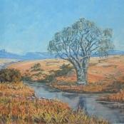 Ampenberger, Stefan| Tree beside a river