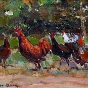 Sold | Boshoff, Adriaan | Chickens walking
