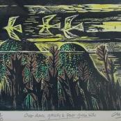 Sold  Clarke, Peter   Past Green hills