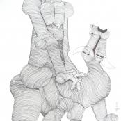 Mokgosi, Nathaniel | Man riding bull