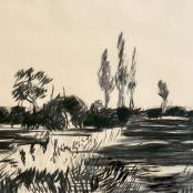 Thijs, Nel | Landscape