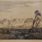 Sold   De Jongh, Tinus   Table mountain