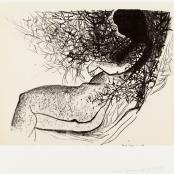 Sold   Dumas, Marlene   Doornrosie