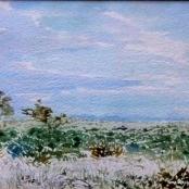 Sold | Jentsch, Adolph | Landscape - Namibia