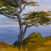 Sold   Jonker, Niel   Cyprus Bay, Hermanus