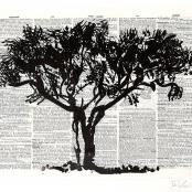 Sold | Kentridge, William | Black monkey thorn