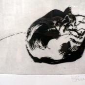 Sold | Kentridge, William | Sleeping Cat