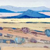 Sold | Van Heerden, Piet | Namaqualand Landscape