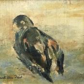 Du Toit, Paul | Dove, signed