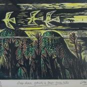 Clarke, Peter | Past green hills