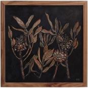 Human, Ronel | Burnt Protea cuttings