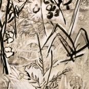 Nel, Thijs   Garden
