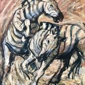 Niemann, Hennie, Jnr     Fighting Zebra