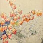 Sold | Oerder, Frans | Flowers, Orange