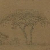 Sold   Pierneef, JH   Rustenburg