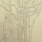Sold  Pierneef, J.H   Wynberg