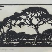 Pierneef, J.H   Thorn Tree, Near Potgietersrust