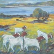 Sold |Pretorius, Kaffie | Goats- Verolenvlei