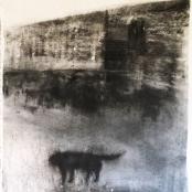 Retief, Rentia  Verlate Hond