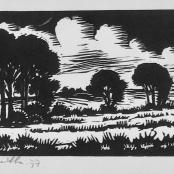 Botha, David   Tree landscape, dated 1977, edition 18 of 100