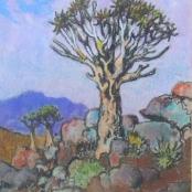 Sold |Theys, Conrad | Quiver tree