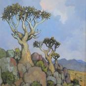 Sold |Theys, Conrad |Kokerboom