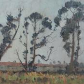 Sold |Van Heerden, Piet | Landscape