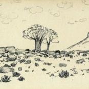 Sold | Van Heerden, Piet | Landscape with quiver trees