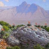Sold | Volschenk, Jan Ernst Abraham | Mozambiquerskop - Riversdale