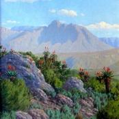Sold | Volschenk, Jan Ernst Abraham | The Mozambiquerskop