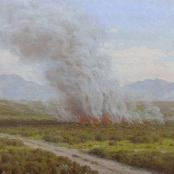 Sold | Volschenk, Jan Ernst Abraham | A Veld Fire, Riversdale