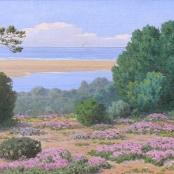 Sold | Volschenk, Jam Ernst Abraham | Sand-Vygies, Still Bay