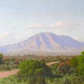 Volschenk, Jan Ernst Abraham   Veld and mountain, Riversdale